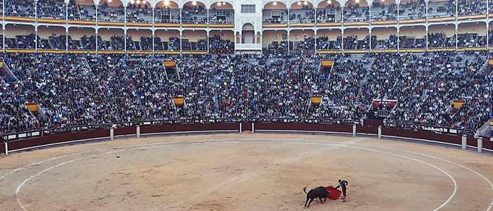 Bullfight_wp